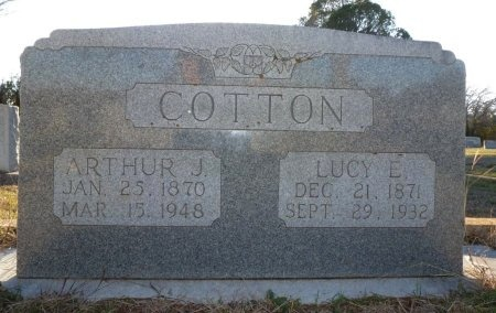 MUSICK COTTON, LUCY ELLEN - Burnet County, Texas | LUCY ELLEN MUSICK COTTON - Texas Gravestone Photos