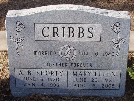 CRIGGS, MARY ELLEN - Callahan County, Texas | MARY ELLEN CRIGGS - Texas Gravestone Photos