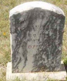 DAVIS, WILLIAM - Callahan County, Texas   WILLIAM DAVIS - Texas Gravestone Photos