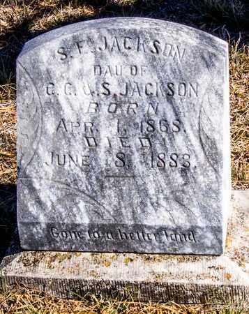JACKSON, S E - Callahan County, Texas | S E JACKSON - Texas Gravestone Photos