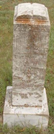 MILLER, CYNTHIA JANE - Callahan County, Texas   CYNTHIA JANE MILLER - Texas Gravestone Photos