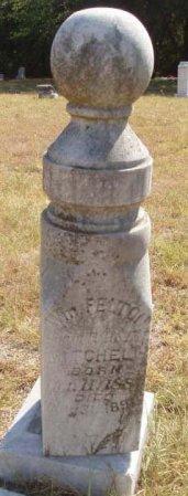 MITCHELL, WM. FELTON - Callahan County, Texas | WM. FELTON MITCHELL - Texas Gravestone Photos