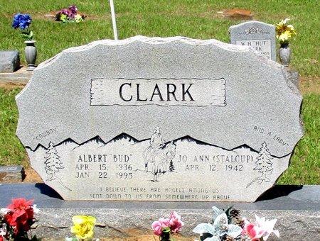 "CLARK, ALBERT  ""BUD"" - Cass County, Texas | ALBERT  ""BUD"" CLARK - Texas Gravestone Photos"