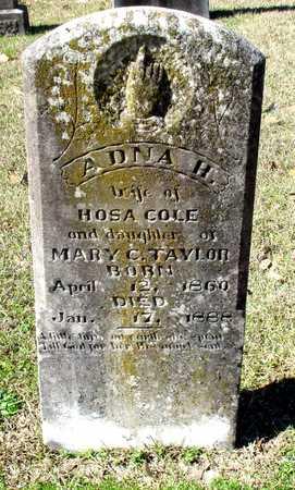 TAYLOR COLE, ADNA H - Cass County, Texas   ADNA H TAYLOR COLE - Texas Gravestone Photos