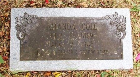 COLE, AMANDA - Cass County, Texas | AMANDA COLE - Texas Gravestone Photos