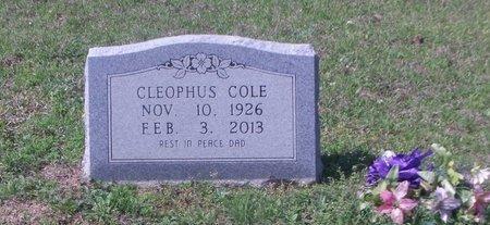 COLE, CLEOPHUS - Cass County, Texas | CLEOPHUS COLE - Texas Gravestone Photos