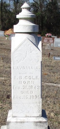 WHITE COLE, LAVONIA A. - Cass County, Texas | LAVONIA A. WHITE COLE - Texas Gravestone Photos