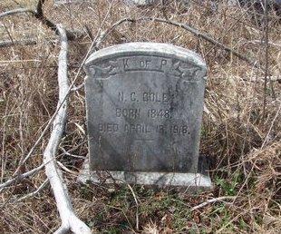 COLE, N C - Cass County, Texas | N C COLE - Texas Gravestone Photos