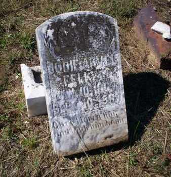 FELKER, JODIE ARVEL - Cass County, Texas   JODIE ARVEL FELKER - Texas Gravestone Photos