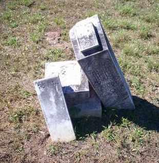 LANE, FANNIE - Cass County, Texas   FANNIE LANE - Texas Gravestone Photos