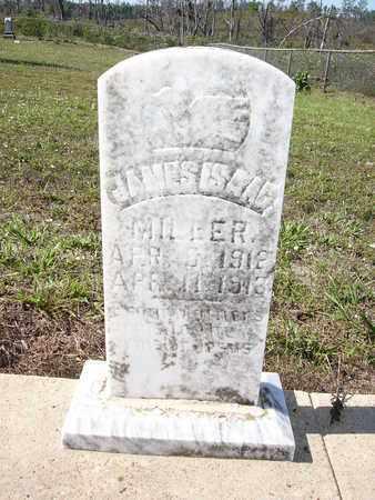 MILLER, JAMES ISAAC - Cass County, Texas | JAMES ISAAC MILLER - Texas Gravestone Photos