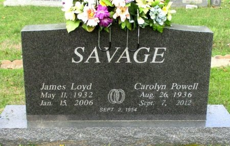 SAVAGE, JAMES LOYD  - Cass County, Texas | JAMES LOYD  SAVAGE - Texas Gravestone Photos