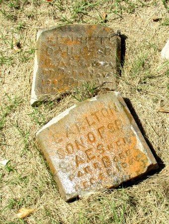 SHEPPARD, EARLTON - Cass County, Texas   EARLTON SHEPPARD - Texas Gravestone Photos