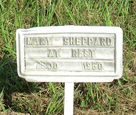 SHEPPARD, MARY - Cass County, Texas | MARY SHEPPARD - Texas Gravestone Photos