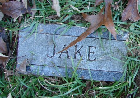 UNKNOWN, JAKE - Cass County, Texas   JAKE UNKNOWN - Texas Gravestone Photos