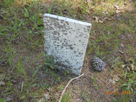 UNKNOWN, UNKNOWN - Cass County, Texas | UNKNOWN UNKNOWN - Texas Gravestone Photos