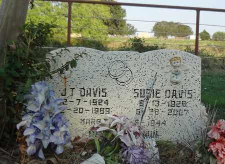 DAVIS, SUSIE - Clay County, Texas | SUSIE DAVIS - Texas Gravestone Photos