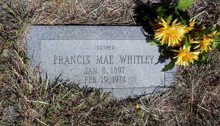 WHITLEY, FRANCIS MAE - Clay County, Texas | FRANCIS MAE WHITLEY - Texas Gravestone Photos