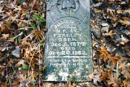 FEAGLEY, JAMES M - Collin County, Texas | JAMES M FEAGLEY - Texas Gravestone Photos