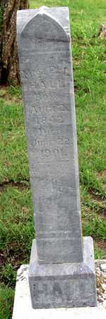 HALL, P. I., MRS. - Collin County, Texas | P. I., MRS. HALL - Texas Gravestone Photos