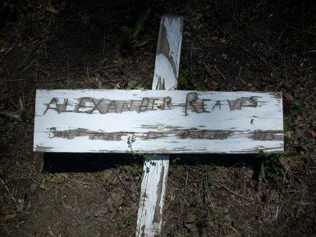 REAVIS, ALEXANDER - Collin County, Texas   ALEXANDER REAVIS - Texas Gravestone Photos