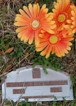 RUTHERFORD, HARLAND E. - Collin County, Texas | HARLAND E. RUTHERFORD - Texas Gravestone Photos