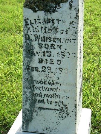WHISENANT, ELIZABETH E - Collin County, Texas   ELIZABETH E WHISENANT - Texas Gravestone Photos