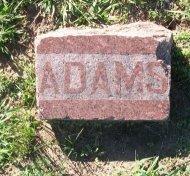 ADAMS, JAMES THOMAS - Cooke County, Texas | JAMES THOMAS ADAMS - Texas Gravestone Photos