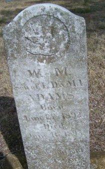 ADAMS, WILLIAM MONROE - Cooke County, Texas | WILLIAM MONROE ADAMS - Texas Gravestone Photos