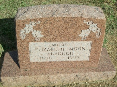 MOON ALAGOOD, ELIZABETH - Cooke County, Texas | ELIZABETH MOON ALAGOOD - Texas Gravestone Photos