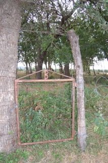 CEMETERY GATE, HOBBS-ABLE - Cooke County, Texas | HOBBS-ABLE CEMETERY GATE - Texas Gravestone Photos