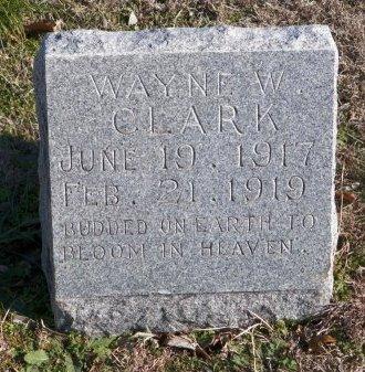 CLARK, WAYNE W. - Cooke County, Texas | WAYNE W. CLARK - Texas Gravestone Photos