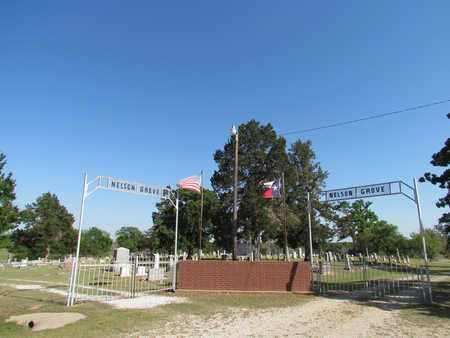 *ENTRANCE,  - Cooke County, Texas |  *ENTRANCE - Texas Gravestone Photos