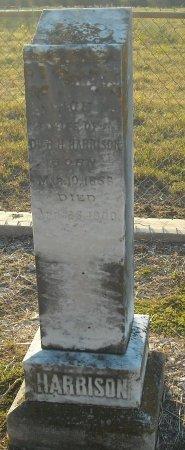 HARRISON, ALICE P. - Cooke County, Texas | ALICE P. HARRISON - Texas Gravestone Photos
