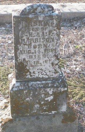 HARRISON, ERSKINE - Cooke County, Texas | ERSKINE HARRISON - Texas Gravestone Photos