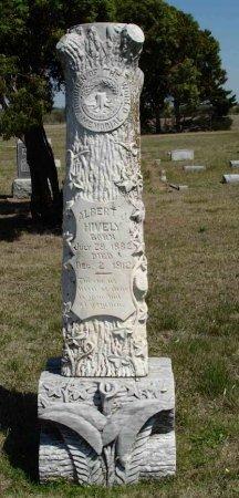 HIVELY, ALBERT - Cooke County, Texas | ALBERT HIVELY - Texas Gravestone Photos