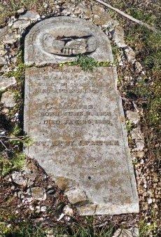 MCAFEE, E. C. - Cooke County, Texas | E. C. MCAFEE - Texas Gravestone Photos