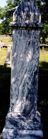WHALEY, JOHN TROUSEDALE - Cooke County, Texas | JOHN TROUSEDALE WHALEY - Texas Gravestone Photos