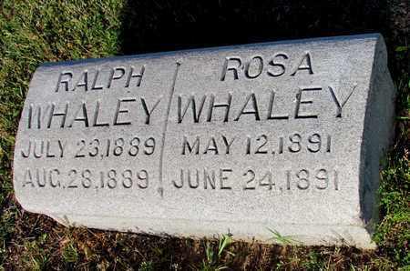 WHALEY, ROSA - Cooke County, Texas | ROSA WHALEY - Texas Gravestone Photos