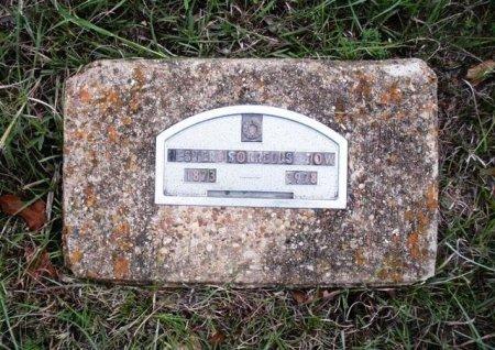 SORRELLS TOW, HESTER - Coryell County, Texas | HESTER SORRELLS TOW - Texas Gravestone Photos