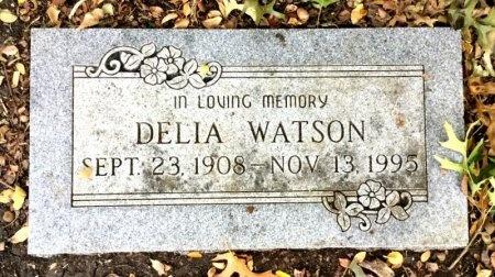 WATSON, DELIA - Dallas County, Texas | DELIA WATSON - Texas Gravestone Photos