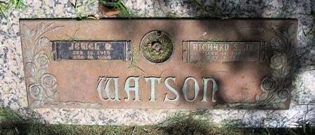 WATSON, RICHARD S. - Dallas County, Texas | RICHARD S. WATSON - Texas Gravestone Photos