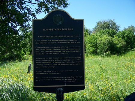 WILSON RICE, ELIZABETH - DeWitt County, Texas | ELIZABETH WILSON RICE - Texas Gravestone Photos