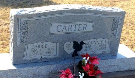 CARTER, CARRIE L. - Denton County, Texas | CARRIE L. CARTER - Texas Gravestone Photos