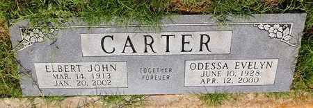 CARTER, ODESSA EVELYN - Denton County, Texas | ODESSA EVELYN CARTER - Texas Gravestone Photos