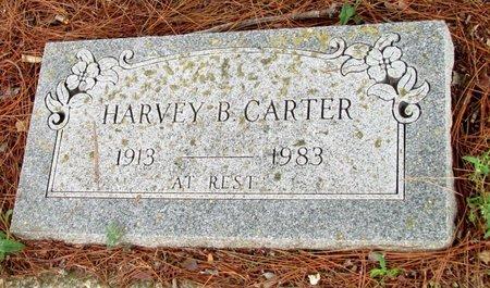 CARTER, HARVEY B. - Denton County, Texas | HARVEY B. CARTER - Texas Gravestone Photos