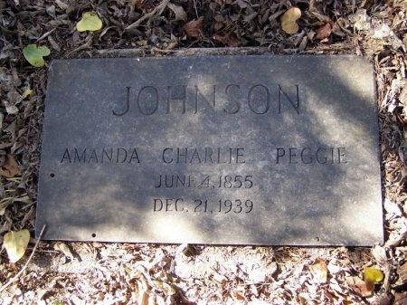 JOHNSON, AMANDA - Denton County, Texas | AMANDA JOHNSON - Texas Gravestone Photos