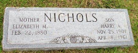 NICHOLS, ELIZABETH M. - Denton County, Texas | ELIZABETH M. NICHOLS - Texas Gravestone Photos