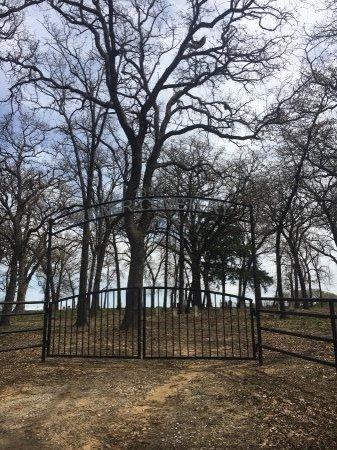 *SKINNER OVERVIEW,  - Denton County, Texas    *SKINNER OVERVIEW - Texas Gravestone Photos