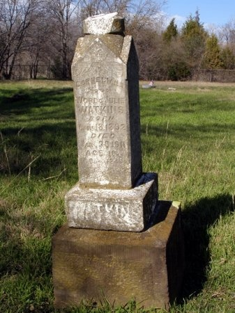 WATKIINS, CORNELIUS - Denton County, Texas | CORNELIUS WATKIINS - Texas Gravestone Photos